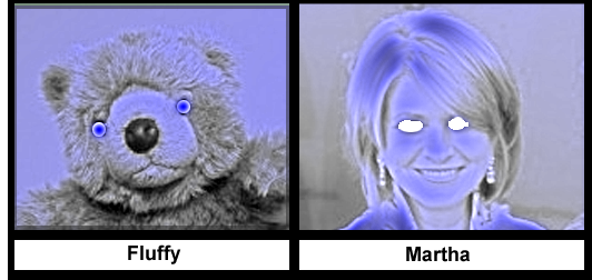 Fluffy still wins.