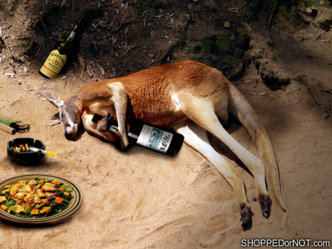drunk-kangaroo-shopped-or-not