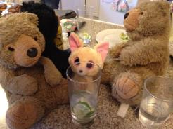 gin-tasting mingler