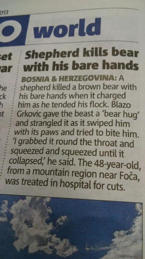 shepherd kills bear