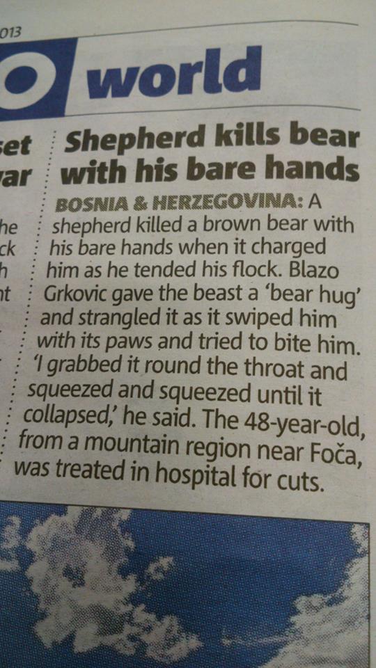 shepherd kills bear
