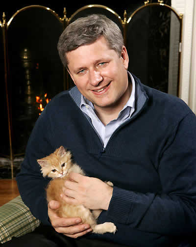 Stephen Harper with a kitten