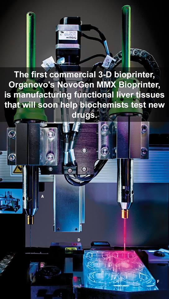 bioprinter can print a new liver for me