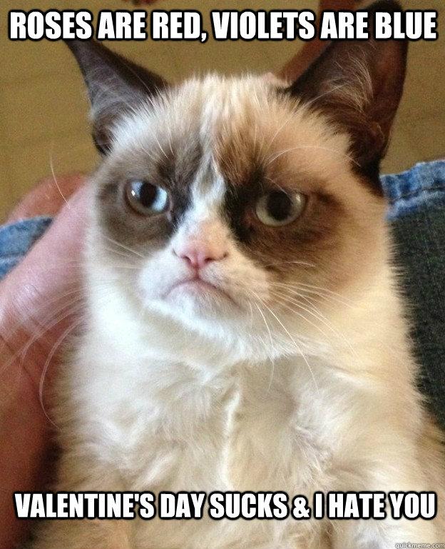 Grumpy-Cat-Valentines-Day-Meme-1