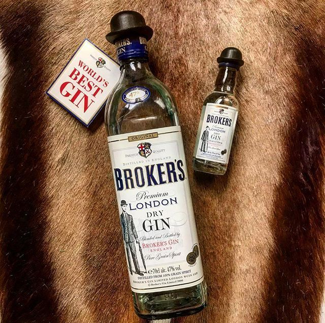 Broker's Gin on possibly bearskin rug OMG
